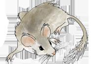neotoma-paleoecology-database-and-community